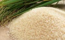 蒸谷米、糙米or白米,餐后控糖谁更强?