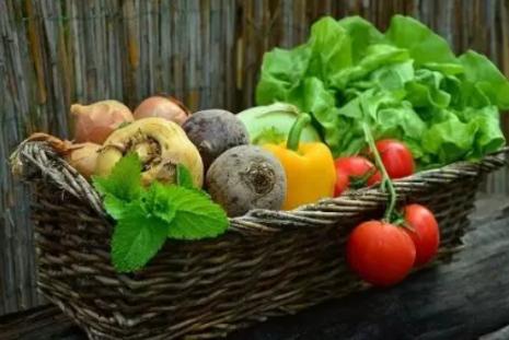营养又有效的减肥食谱,赶快收藏